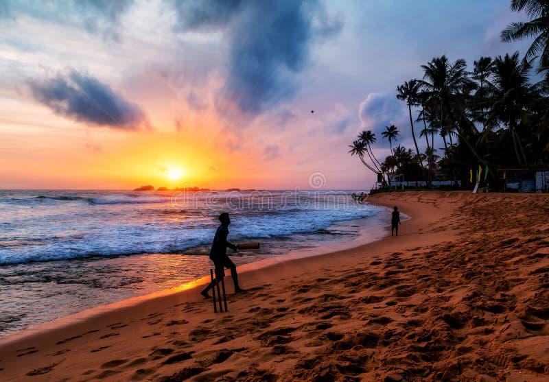 Schattenbilder auf dem tropischen Sonnenuntergang stockfotos