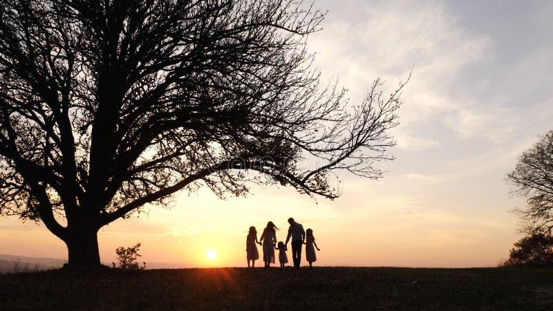 Schattenbilder der glücklichen Familie gehend in die Wiese nahe einem großen Baum während des Sonnenuntergangs lizenzfreie stockbilder