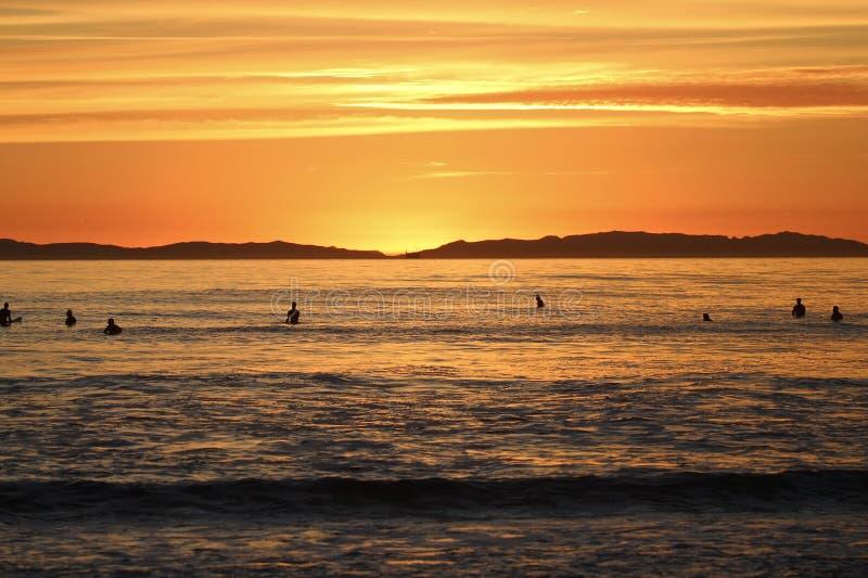 Schattenbilder von Surfern während des Sonnenuntergangs lizenzfreie stockfotografie