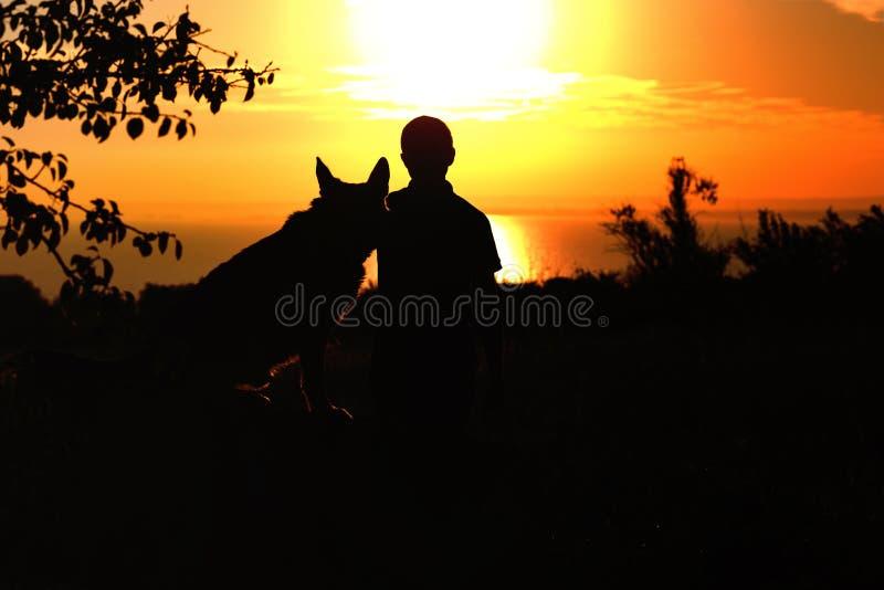 Schattenbildprofil des Schäferhundhundes, der ergeben in der Nähe seinen Eigentümermann, Jungen geht auf Natur mit Haustier bei S stockfotos