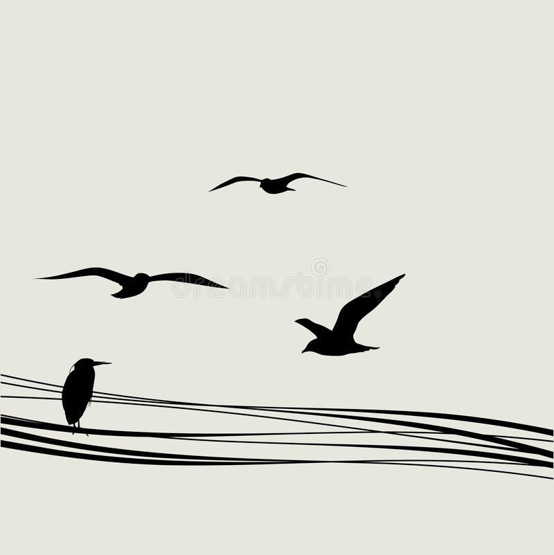 Schattenbildvogel lizenzfreie abbildung