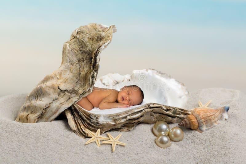 Schatzbaby in der Auster stockbild