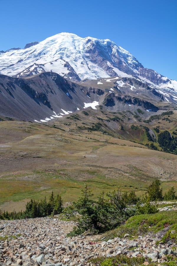 Schauen über Alpenwiesen zum Mount Rainier von Fremont-Spur stockbild