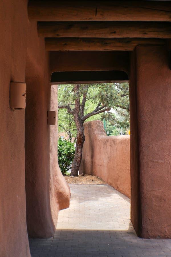 Schauen durch einen Gehweg des luftgetrockneten Ziegelsteines zu einer Wand und zu einer Kiefer draußen in Santa Fe New Mexiko stockfoto