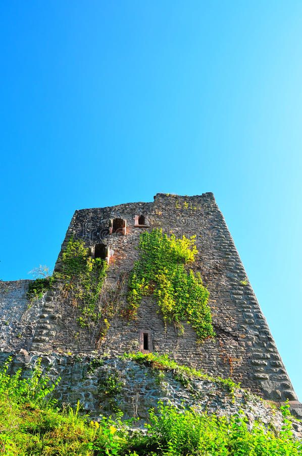 Free Schauenburg Castle Royalty Free Stock Photography - 10468367