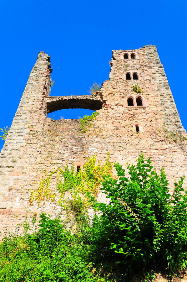 Free Schauenburg Castle Royalty Free Stock Photo - 10468415