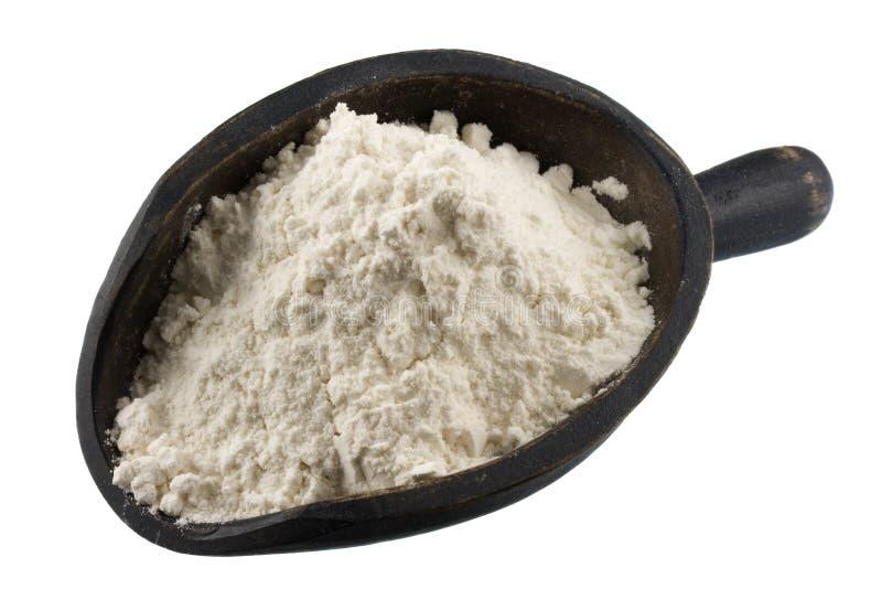 Schaufel des Weizenmehls oder anderen weißen Puders stockfoto