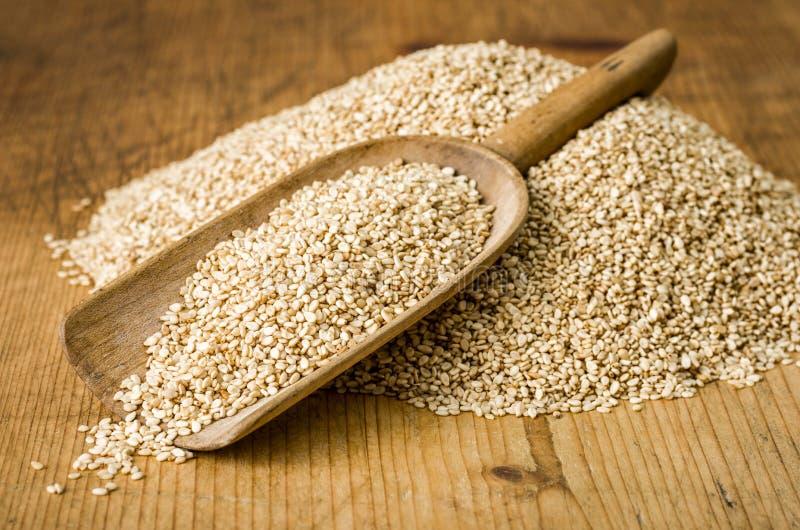 Schaufel mit Samen des indischen Sesams stockfoto