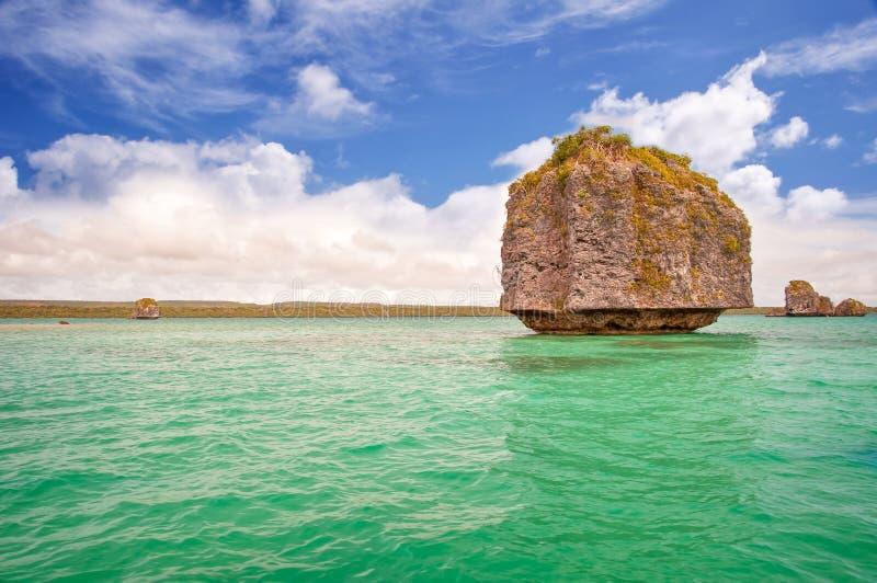 Schaukeln Sie in das Wasser, Insel von Kiefern stockbilder