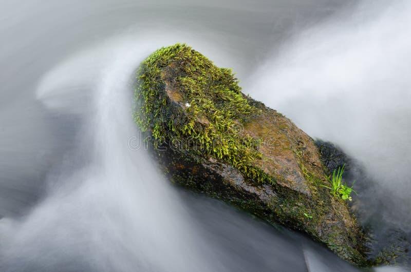 Schaukeln Sie in einen lärmenden Gebirgsfluss, großer Stein im Wasser, das durch erstaunliches grünes Moos an einem schönen Herbs lizenzfreie stockfotografie