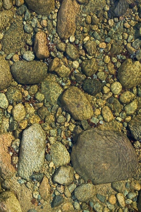 Schaukeln Sie in Herbststrom bei Crawford Notch State Park in den weißen Bergen von New Hampshire, Neu-England lizenzfreie stockfotografie