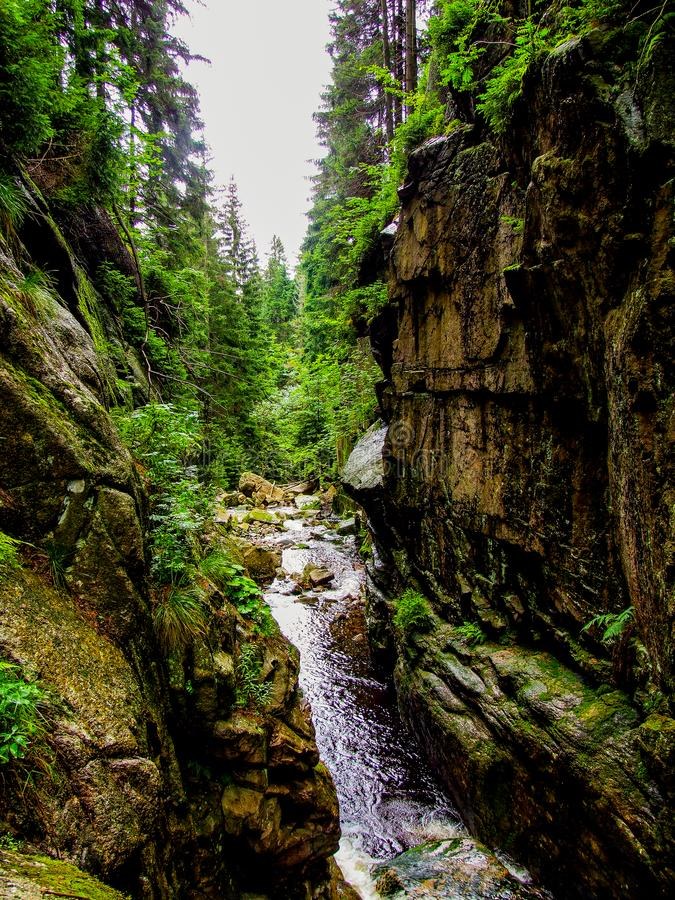 """Schaukeln Sie revine nahe KamieÅ-""""czyk ` s Wasserfall, der in Polen, in Sudetes-Bergen gelegen ist lizenzfreie stockfotografie"""