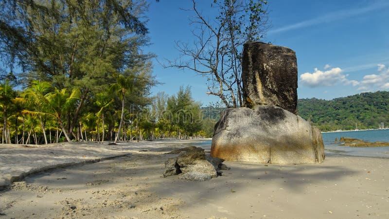Schaukeln Sie und stehend Stein mit Baum beim Palm Beach stockbilder