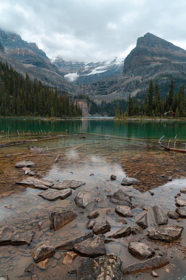 Schaukelt und meldet das klare alpine Wasser von See O'Hara hoch in kanadischen Rocky Mountains mit Kabinen und Bergen im bewölkt lizenzfreie stockfotos