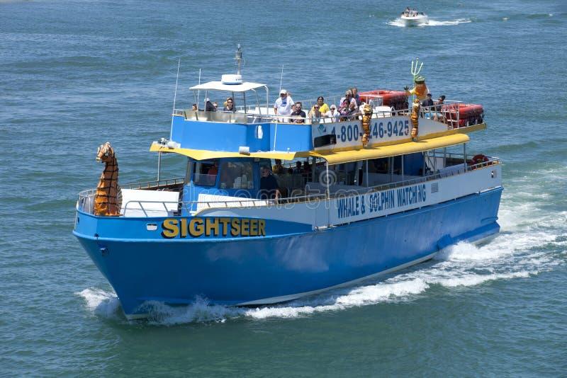 Schaulustiger, der s-Gruppe des Touristen auf einer Delphin- und Waluhr nimmt stockfotos