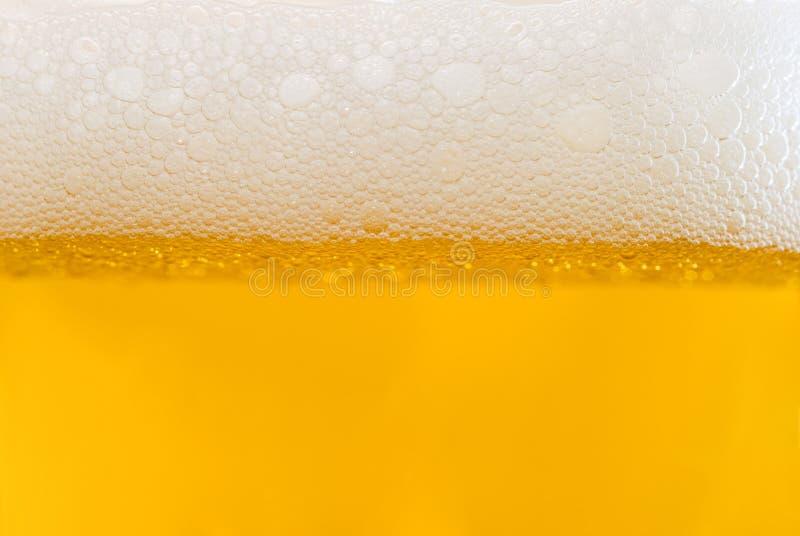 Schaumgummi auf hellem Bier stockfotografie