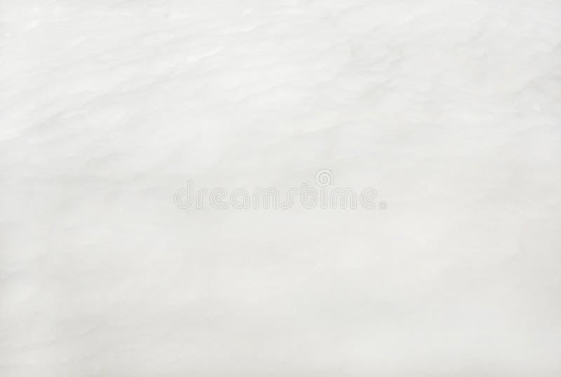 schaumgummi Empfindliche Palette stockbilder