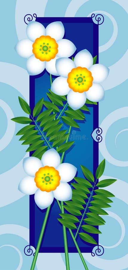 Scheda con i fiori bianchi royalty illustrazione gratis
