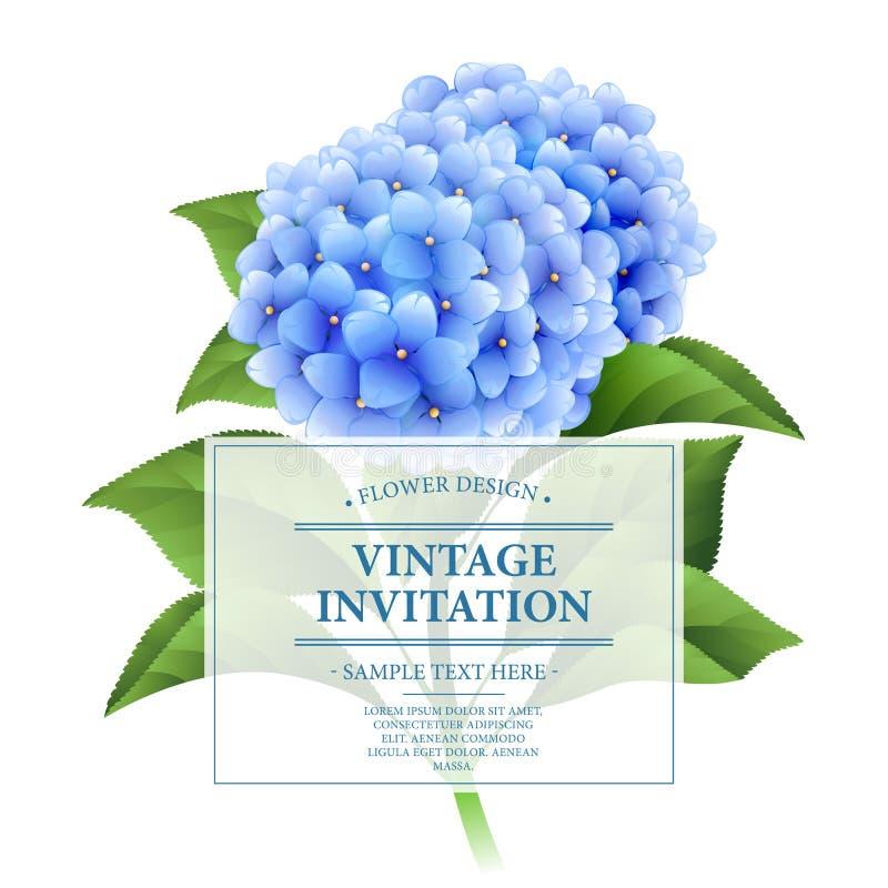 Scheda _1 dell'invito Fiori blu dell'ortensia Scheda floreale dell'annata Illustrazione di vettore illustrazione vettoriale