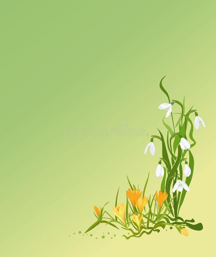 Scheda di gradiente della sorgente royalty illustrazione gratis