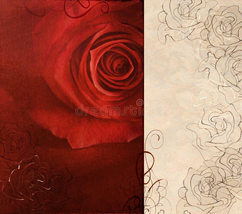 Scheda di rosa di colore rosso royalty illustrazione gratis