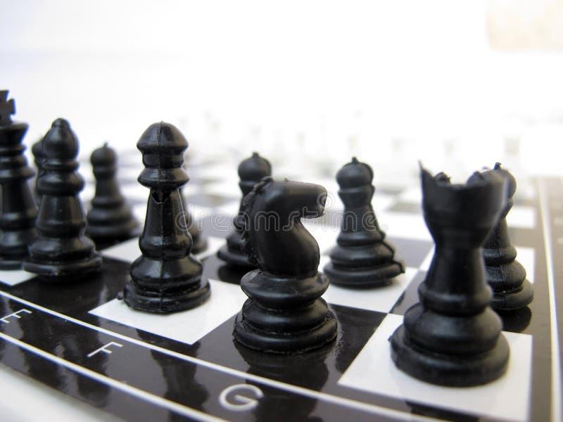 Scheda di scacchi immagini stock libere da diritti