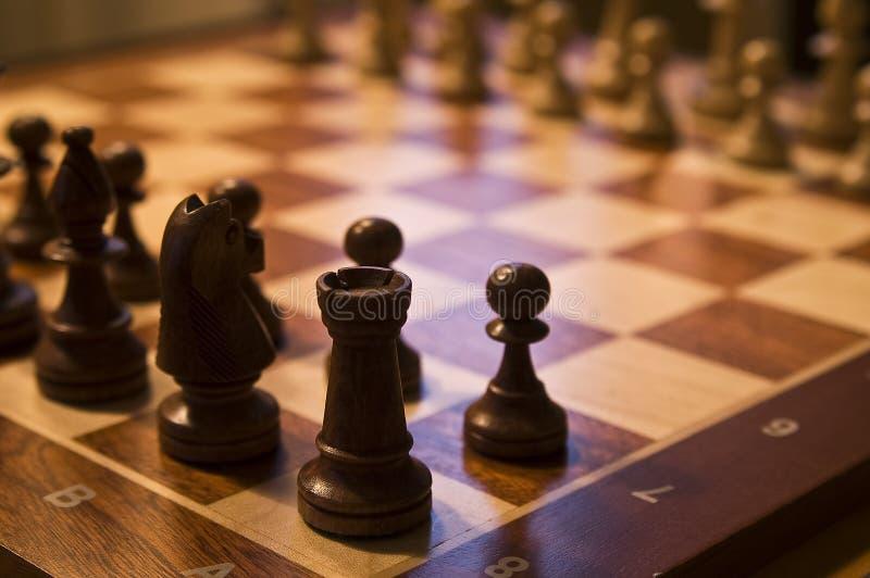 Scheda di scacchi fotografia stock libera da diritti