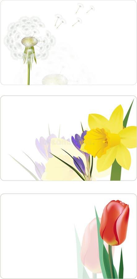 Schede con i fiori della sorgente illustrazione vettoriale