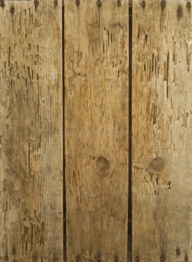 Schede di legno anziane inchiodate & weather-beaten immagine stock