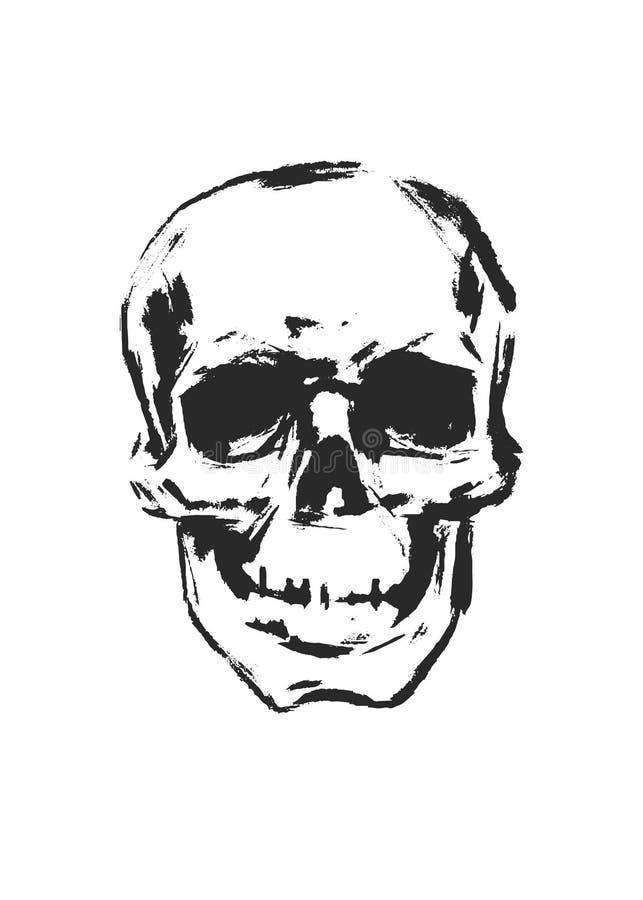 Download Schedel. vector illustratie. Illustratie bestaande uit menselijk - 29506456