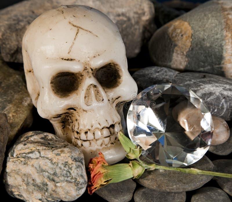 Schedel en diamant stock foto