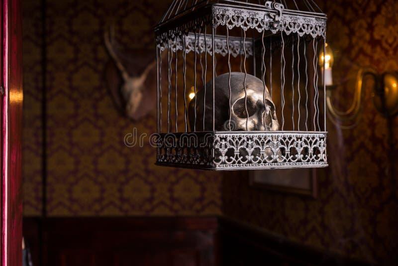 Schedel in het Overladen Kooi Hangen in Candlelit Zaal stock afbeelding