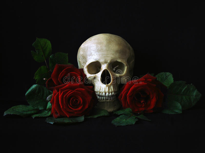 Schedel met rode rozen
