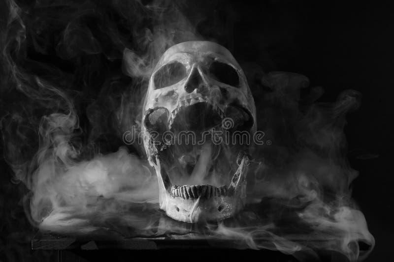 Schedel in rook stock afbeeldingen