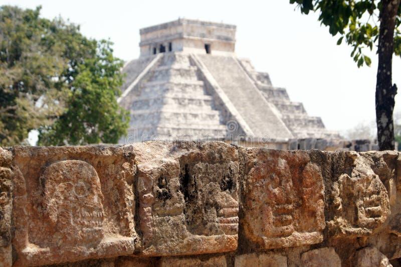 Schedels en piramide stock afbeelding