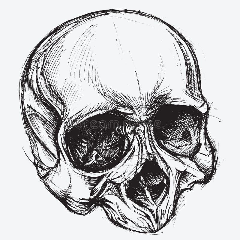 Schedeltekening vector illustratie