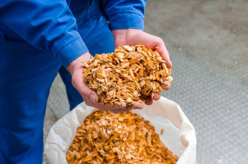 scheggia il legno La linea per la produzione delle squisitezze affumicate In fotografia stock