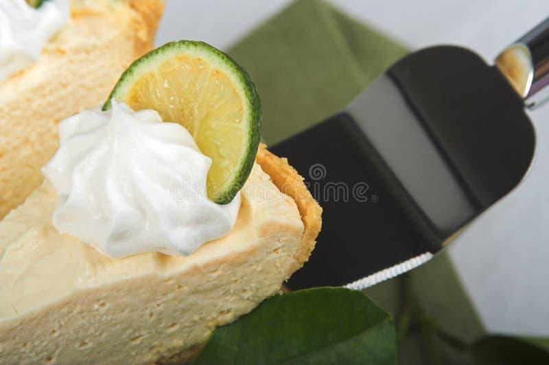 Scheibe der Torte lizenzfreie stockbilder