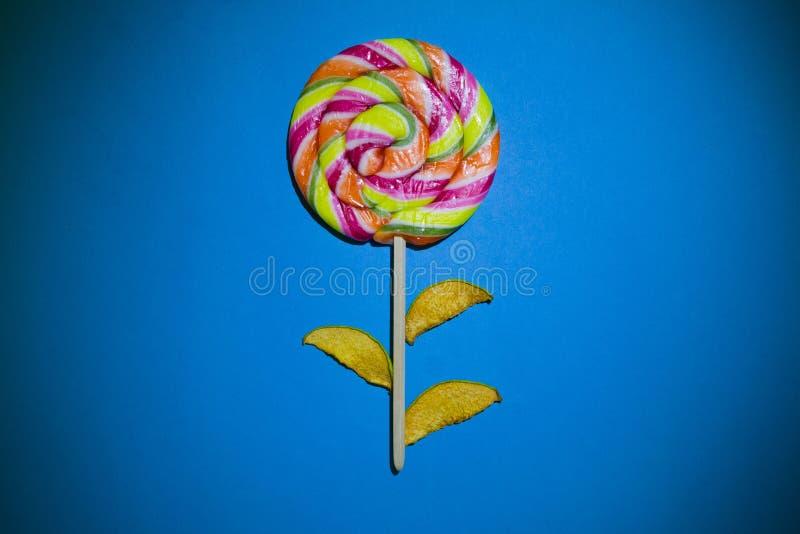 Scheiben der getrockneten Quitte und der großen hellen Süßigkeit, Spirale, Strudelform, gestreifte Farbe, flaches gelegtes Foto,  lizenzfreies stockfoto