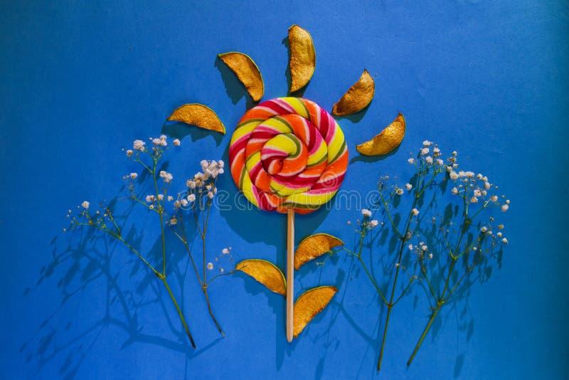 Scheiben der getrockneten Quitte und der großen hellen Süßigkeit, Spirale, Strudelform, süßer köstlicher Imbiss, flaches gelegtes stockfotos