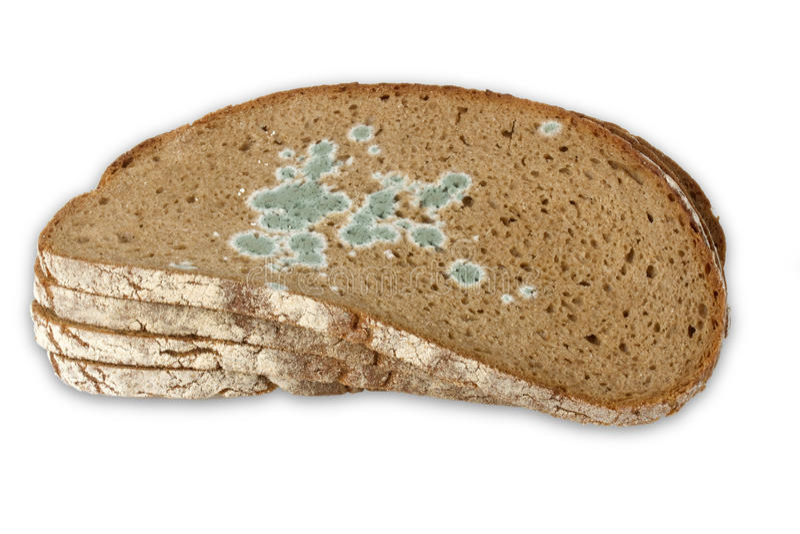 Scheiben des schimmeligen Brotes lizenzfreies stockbild