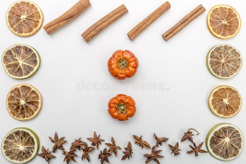 Scheiben von getrockneten Orangen, von Kürbisen, von Anisblume und von Zimt auf einem weißen Hintergrund stockbild