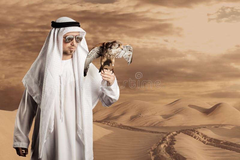 Scheich mit der Sonnenbrille, die einen Falken vor Wüstenhügeln und -schritten hält stockfotos