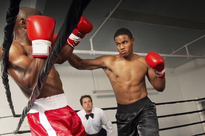 Scheidsrechter Watching Boxers Fight in de Ring stock afbeeldingen