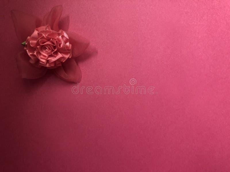 Scheinmeldungsbereich mit rosa Blume, Briefpapier oder Rahmen auf dunklem und hellrosa Hintergrund lizenzfreie stockfotos
