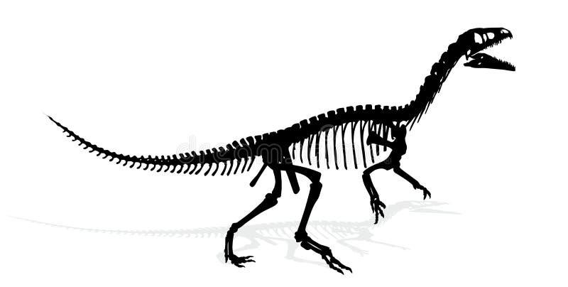 Scheletro del dinosauro illustrazione vettoriale