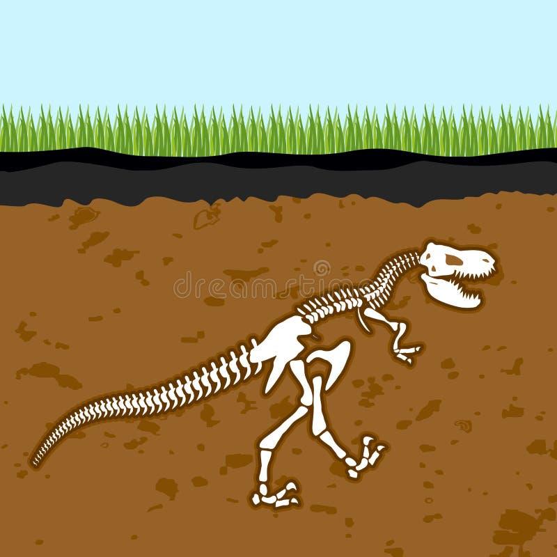 Scheletro del tirannosauro Rex Ossa di dinosauro in terra fossile illustrazione di stock
