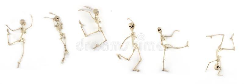 Scheletro di dancing immagini stock