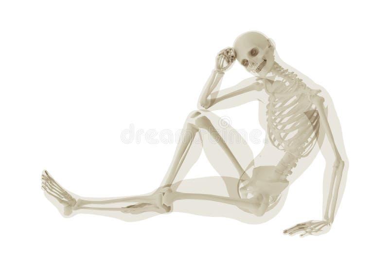 Scheletro di seduta e una siluetta di un corpo del ` s dell'uomo 3D scientifico, illustrazione anatomica medica illustrazione di stock