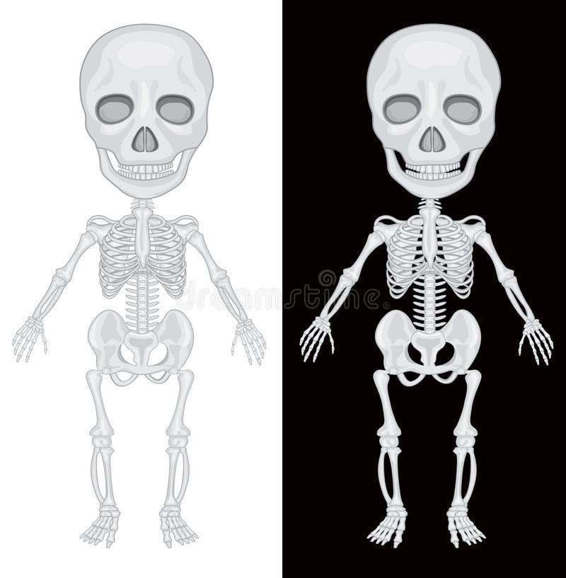 Scheletro su fondo in bianco e nero illustrazione vettoriale